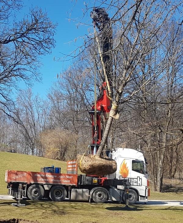 Volvo Baumarbeiten